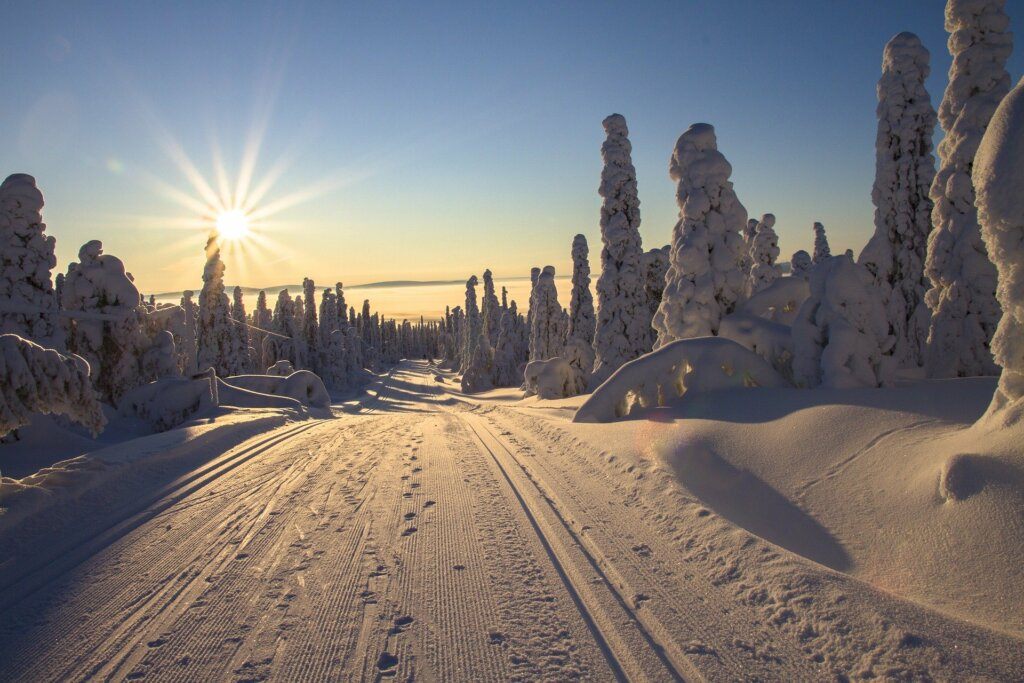 зимнего солнцестояния